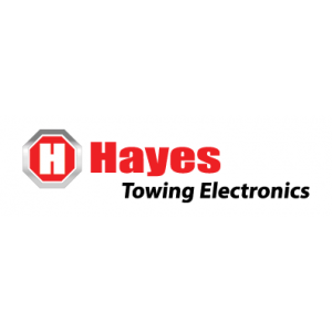 Hayes Electronic Controllers